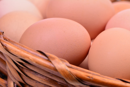 Fresh eggs Stock Photo - 27194080