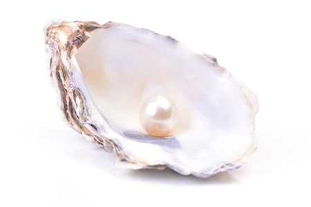mother of pearl: Pearl