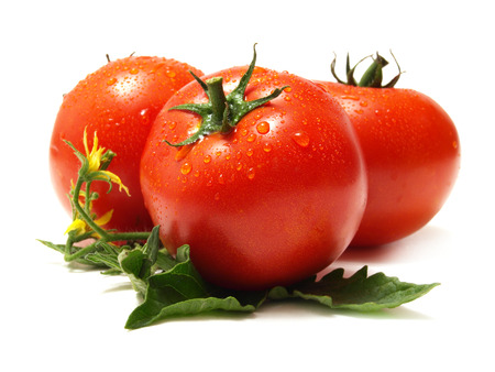 tomato: Fresh tomato Stock Photo