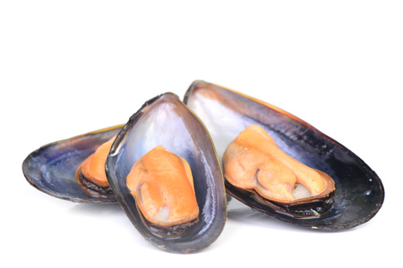 peppered: Fresh mussel