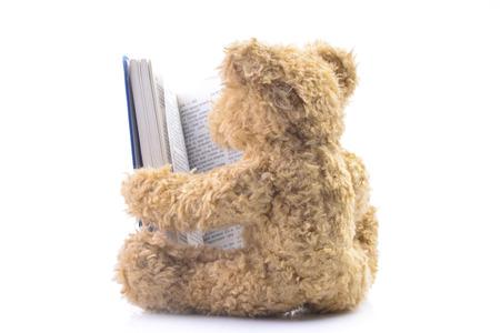 Cute bear toy reading a book on the floor
