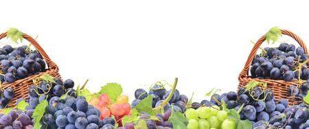 Baskets of grape fruit