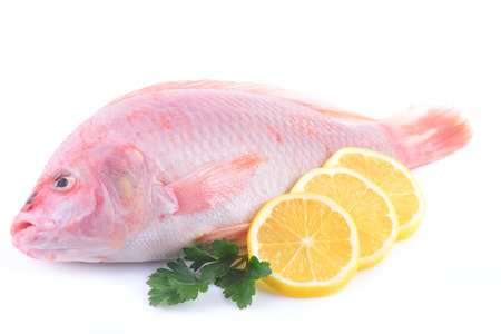 Tilapia fish and orange slices on a white background