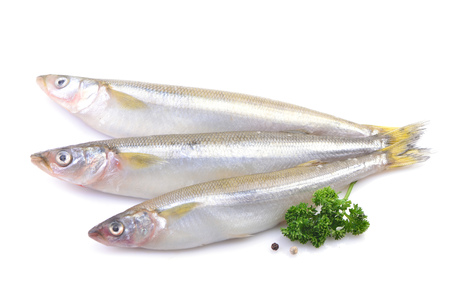 Smelt fish on a white background