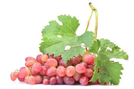 Grape fruit on white background