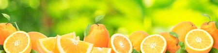 Arancia fresca del tuo giardino preferito Archivio Fotografico