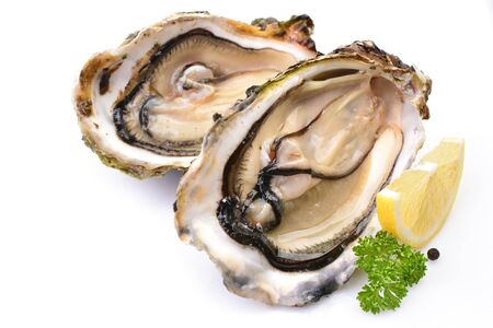 Oysters on a white background with lemon