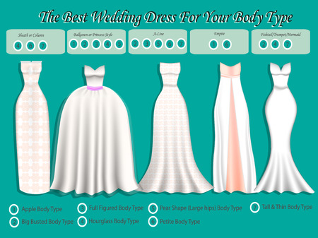 Wedding Dress For Body Type. Wedding Dress Infographic. Set Of ...