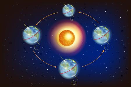 Las estaciones en la tierra. Ilustración que muestra la posición de la Tierra en relación con el Sol en los equinoccios y solsticios. Ilustración de vector
