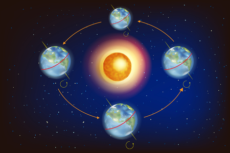The Seasons on Earth. Illustration showing Earth's position in relation to the Sun at the equinoxes and solstices. Illustration