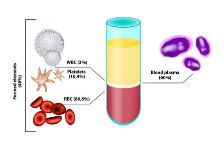 Blutzusammensetzung. Infografiken