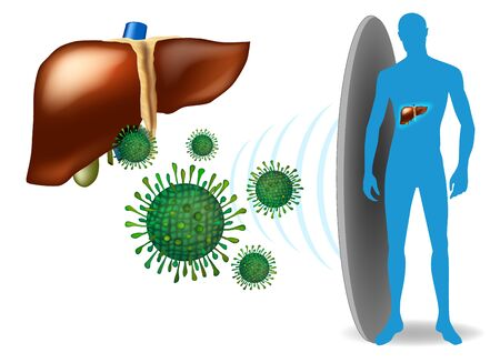 Liver protection concept. Liver with hepatitis infection