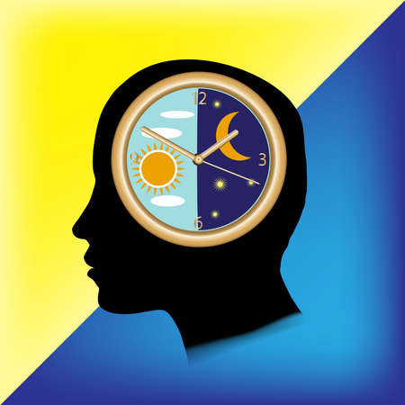 The circadian rhythm and sleep-wake cycle. Insomnia and sleep disorders.