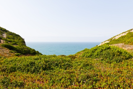 a view of grass coastline and ocean in Portugal Stock Photo