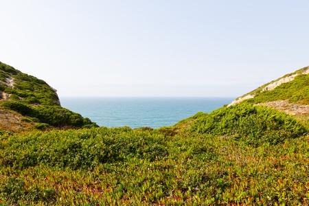 Ein Blick auf Gras K�ste und Meer in Portugal Lizenzfreie Bilder
