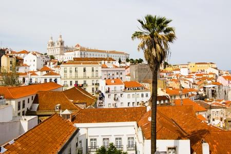 Alfama, Alten Lissabon, Palm Lizenzfreie Bilder