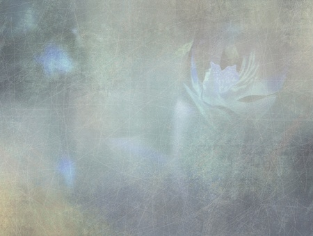 Romantic abstract background - grunge style - floral design photo