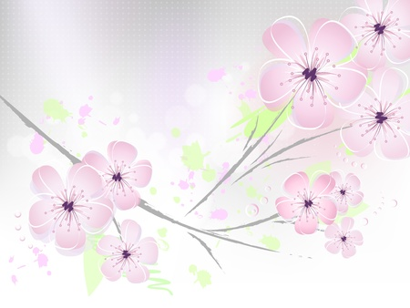 Pink floral spring background - cherry blossom, flower design - style with grey to white gradient - suitable for themes like love, beauty, valentine, birthday, wedding and the like - illustration Stock Vector - 9319077
