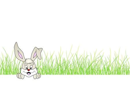 Easter bunny sitting in green grass - cute smiling rabbit - vector illustration Vector