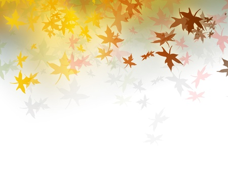 auburn: Fall background with falling autumn leaves and gradient to white