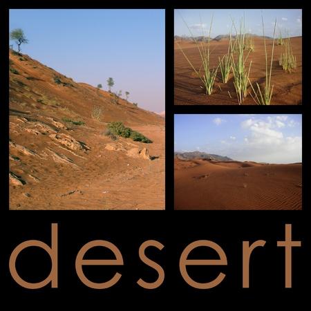 Desert landscape - collage photo
