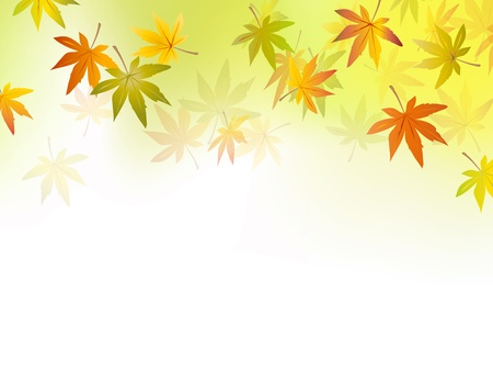 autumn leaves falling: Autumn background - fall leaf - october season - yellow green to white background gradient - vector illustration