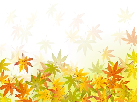 scattered: Fall background - autumn leaf - vector illustration