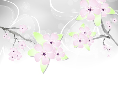Spring flower background with abstract cherry blossoms Stock Vector - 12494018