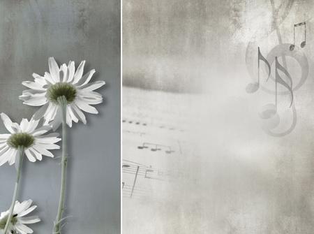 꽃 배경 빈티지 디자인 - 추상적 인 데이지