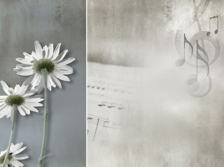 old sheet music: Flower background vintage design - abstract daisies Stock Photo