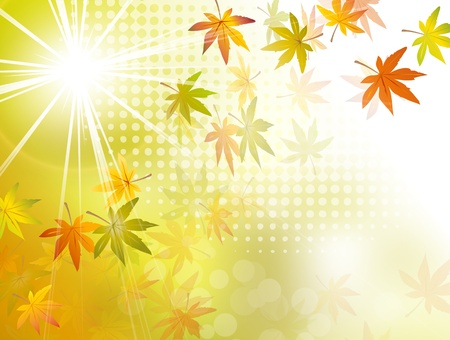 Autumn sun background - fall leaves Vector