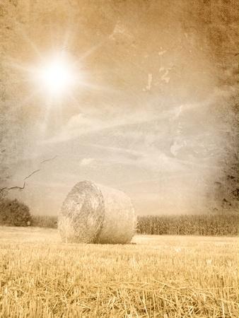 hay field: Vintage autumn landscape - grunge fall background Stock Photo