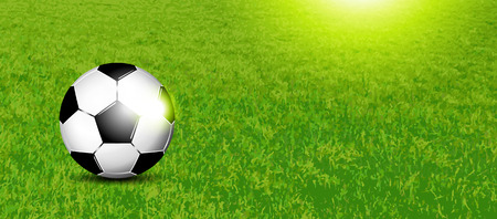 footie: Soccer banner - football on grass texture