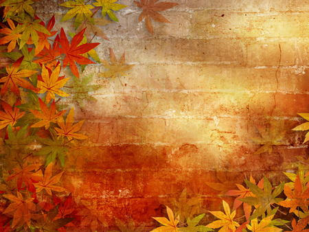 Autumn background with fall leaves frame photo