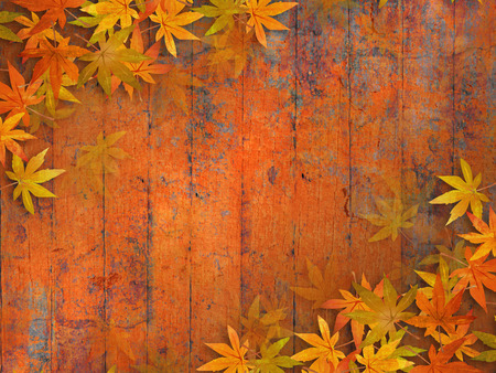 Fall leaves background - grunge autumn design photo