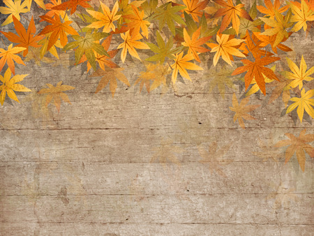 Fall leaves on wooden planks - autumn design photo