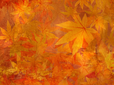 fall leaves background: Fall leaves pattern - autumn background