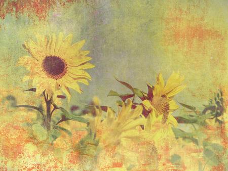 Retro sunflower field - vintage flower background photo
