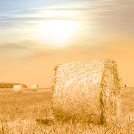 bail: Summer field with hay bales in warm evening sunlight - photo with soft oil paint filter - autumn concept Stock Photo