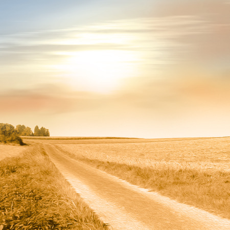 Field path in warm sunlight in vintage style - idyllic landscape - peaceful - rural scenery - picture with soft oil paint filter