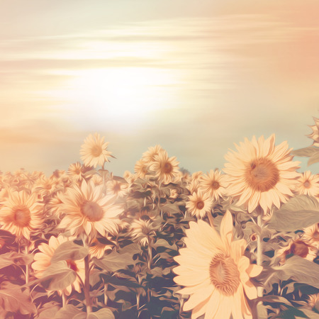 golden dusk: Sunflower field in retro style with oil paint  Stock Photo