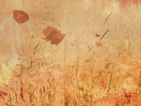 poppy field: Wildflower meadow - poppy field in vintage drawing style - natural flower background in retro sepia tone
