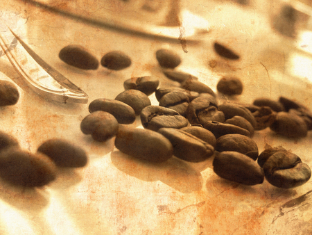 Grunge coffee beans scattered on table with part of a spoon - vintage breakfast concept with morning light Stock Photo