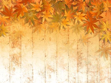 잎 테두리 배경 가을 - 추상 추수 감사절 패턴을 스톡 콘텐츠 - 60486805