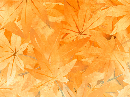 theme parks: Leaves background - abstract fall pattern Stock Photo