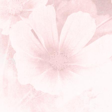 パステル水彩画の柔らかいピンクの花背景