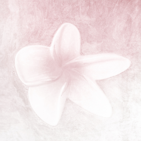 Flower background in soft pink watercolor Stock Photo