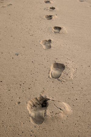 damp: Numerose impronte nella sabbia umida sulla spiaggia Archivio Fotografico