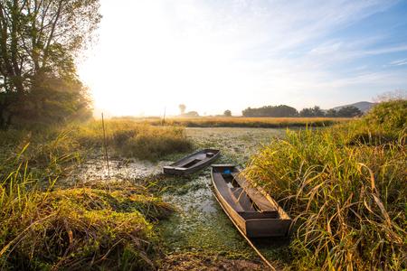 wetland: wetland boat Stock Photo