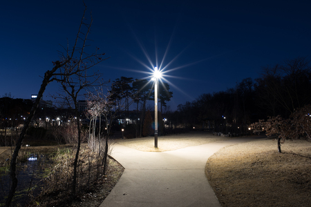 forked road: street lamp in the park4